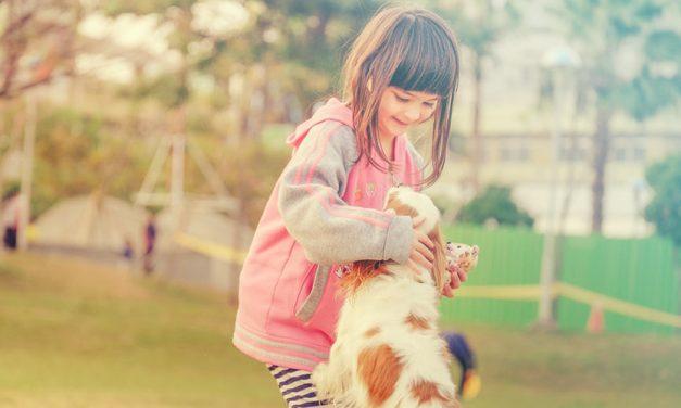 Waarom is mijn hond bang voor kinderen en wat kan ik eraan doen?