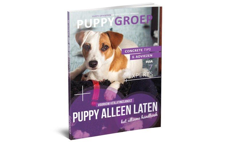 Stapsgewijze Handleiding voor het Opvoeden van je Puppy: De Nieuwe Methode! 4
