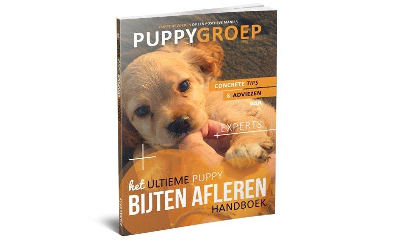 Stapsgewijze Handleiding voor het Opvoeden van je Puppy: De Nieuwe Methode! 3