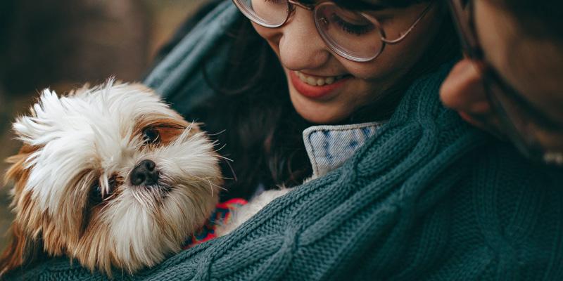 De mijlpalen in het eerste jaar van je puppy 3